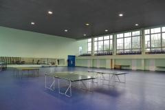 Гімнастичний зал: аеробіка, настільний теніс, гімнастичне триборство